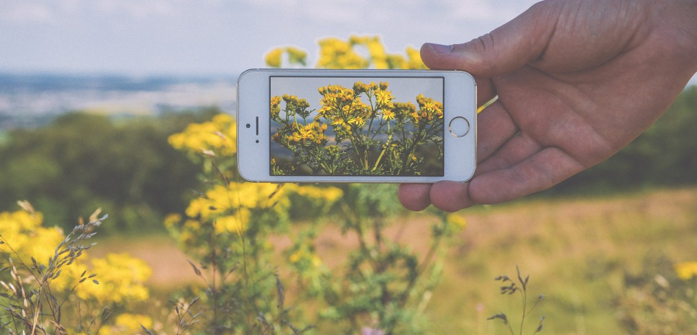 iPhone photographers